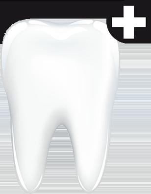 Großer Zahn